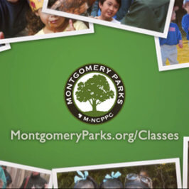 Montgomery Parks: Summer Programs